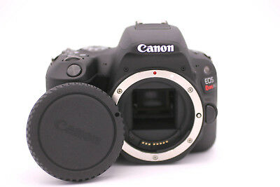 Canon EOS Rebel SL2 EOS 200D 24.2 MP Camera - Black (w/ EF-S 18-55mm IS STM)