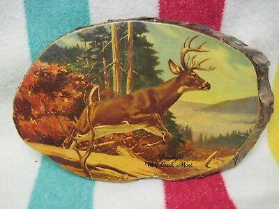 *rare, Vintage Frenchy's Cafe & Cabins, Wolf Creek, Montana, Decoupage Buck Deer