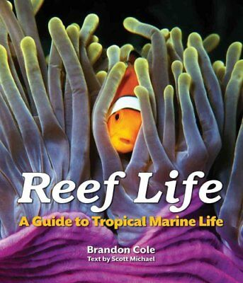 Reef Life A Guide to Tropical Marine Life by Brandon Cole 9781770851900