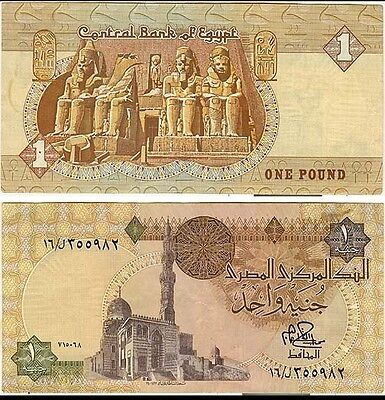 1 One Egyptian Pound Uncirculated Brand new + Free Postage