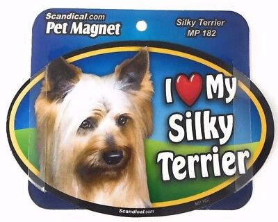 I LOVE MY SILK TERRIER  DOG Magnet Gifts, Cars, Trucks. Lockers, Refrigerator