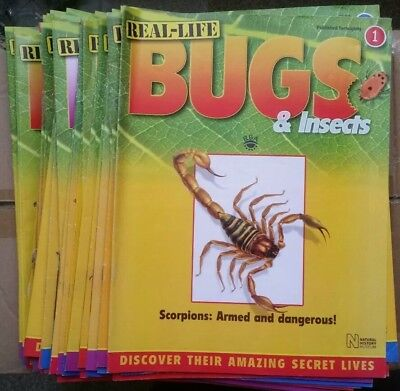 Real Life Bugs & Insects Magazine Collection National History Museum and VGC