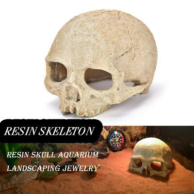 Human Hollow Skull Head Skeleton Resin Bones Fish Tank Ornament Decor Halloween