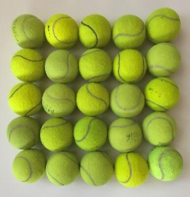 25 Used Tennis Balls - Great For Dogs, Backyard Games, Beach Etc