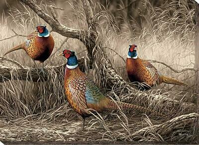 First Dusting - Pheasants Wrapped Canvas by Rosemary Millette