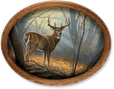 In His Prime - Deer Large Framed Canvas Oval by Rosemary Millette