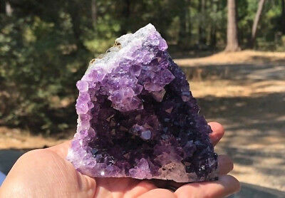 Amethyst Crystal Druze Cluster Natural Geode Specimen Reiki Your Choice of Size