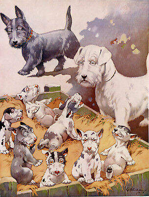 "SEALYHAM TERRIER SCOTTIE PUPPIES ANTIQUE DOG ART PRINT by George Study ""Bonzo"""