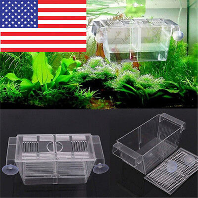 Aquarium Hatchery Fish Tank Guppy Double Breeding Breeder Rearing Trap Box USA