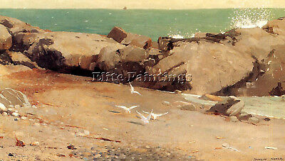 Homer Winslow Rocky Coast And Gulls Artist Painting Oil Canvas Repro Art Deco