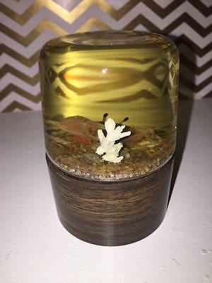 Vintage Nature Gems Educational Embedments Fiddler Crab Paperweight