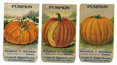 Set of 3 Different Antique Pumpkin Seed Packets, 1910-20's, H03