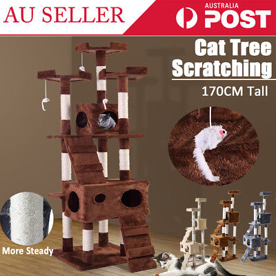 Pet Cat Scratching Post Tree Gym House Condo Furniture Scratcher Pole Toy 170CM