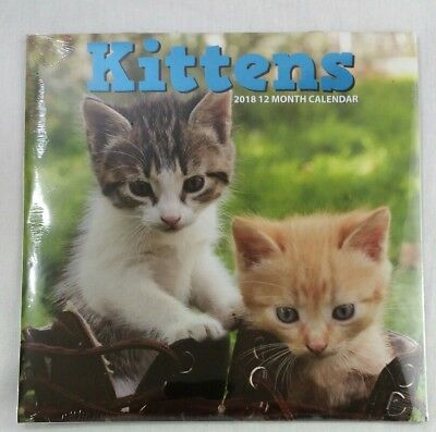 2 Kittens Calendar 12 months 12 inches 2018 & 2017 Fast Shipping