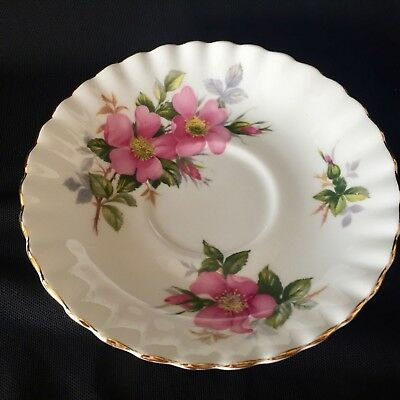 ROYAL ALBERT Fine Bone China 'Prairie Rose' REPLACEMENT SAUCER