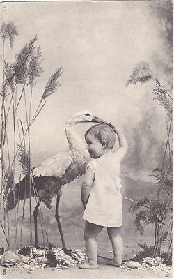 6 TUCK Baby & Stork postcards , 00-10s