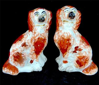 Pair Antique Victorian Staffordshire Pottery Russet Red Spaniel Dogs