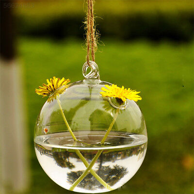F90D New Cute Clear Glass Round with 2 Holes Flower Plant Hanging Vase Decor