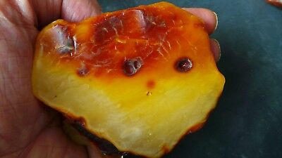 Genuine Baltic Natural    Amber  Stones stone 110 gram 琥珀色