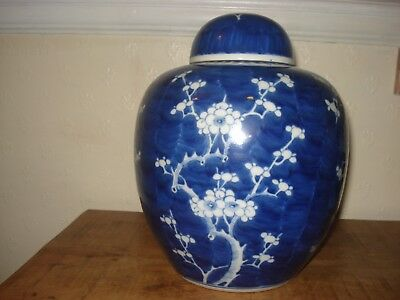 1xstunning chinese 19th century large< 26cm >blue white ginger jar with lid