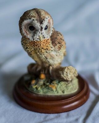 Border Fine Arts Tawny Owl 484245 by Russell Willis 1998