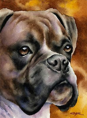 BOXER Watercolor Painting DOG 8 x 10 Art Print Signed by Artist DJR