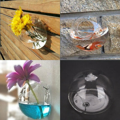 C98F Clear Wall Hanging Glass Plant Flower Vase Hydroponic Fish Tank Decoration