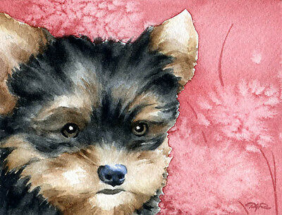 YORKSHIRE TERRIER PUPPY Watercolor 8 x 10 Art Print Signed by Artist DJR