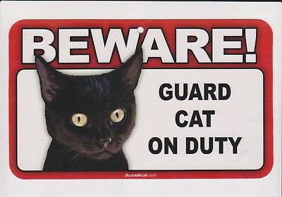 Adorable Black Kitten BEWARE! GUARD CAT ON DUTY Laminated Sign