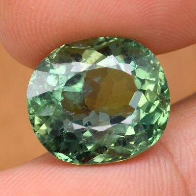 12.94ct 15.2x13.4mm Oval Natural Unheated Green Apatite, Brazil