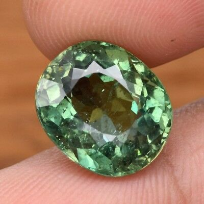9.26ct 13.3x11.4mm Oval Natural Unheated Green Apatite, Brazil