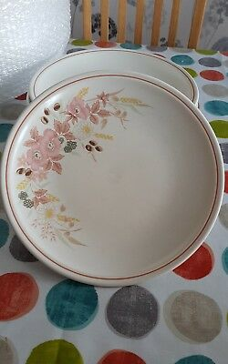 """7 x BOOTS Hedge Rose 10"""" 26cm Dinner Plates in VGC"""