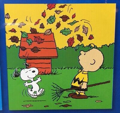 2019 Wall Calendar 12 Month Peanuts Characters Charlie Brown Back to School