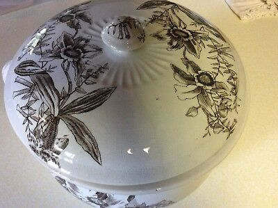 Antique Ironstone Aesthetic Chamber Pot With Lid Orchid Motif