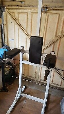 Pull Up Chin Up Dip Station multi gym