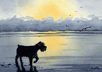 MINIATURE SCHNAUZER Dog Watercolor 8 x 10 ART Print Signed by Artist DJR