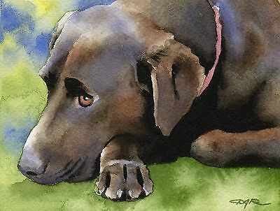 CHOCOLATE LAB Painting Dog 8 x 10 ART Print Signed by Artist DJR