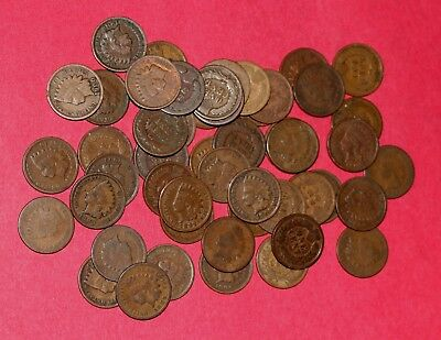 Indian Head Penny Roll (50 coins) 1880-1907 collection - nice lot