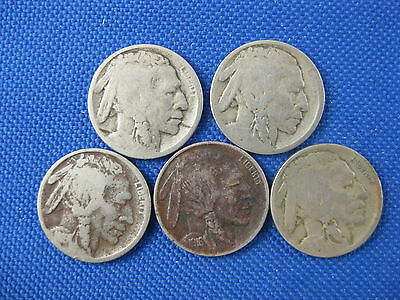 5 Pc U.s. Buffalo Nickel Coin Lot 1915 D 1915 D 1916 1916 S 1916 S