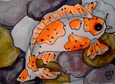 "Aceo  Original  ATC  "" KOI ""    pencil / ink"