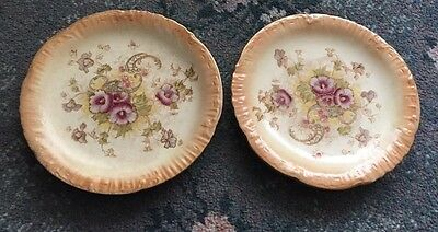 Pair If Beautiful Crown Devon Sf&Co Elm 22.5Cm Blushware Plates