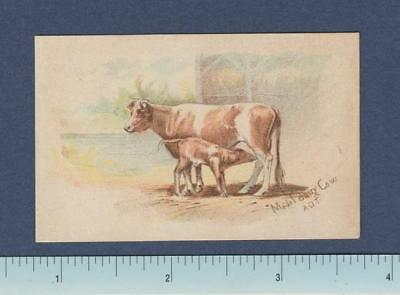 1890's Dwight Cow Brand Soda ~ 30 Card Series ~ Model Dairy Cow