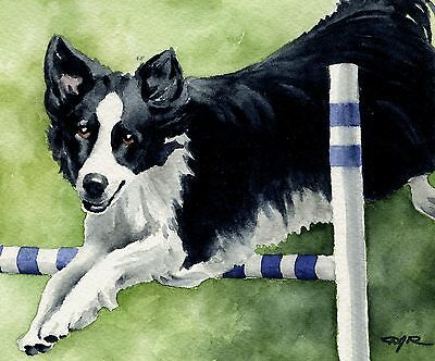 BORDER COLLIE AGILITY Painting DOG 8 x 10 Art Print Signed by Artist DJR