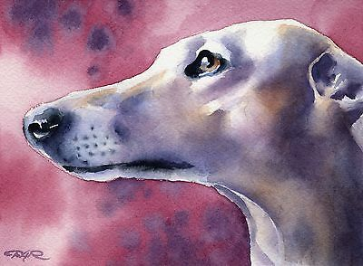 GREYHOUND Painting Dog 8 x 10 ART Print Signed by Artist DJR