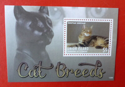 2013 St VINCENT CATS EUROPEAN SHORTHAIR UNION ISLAND STAMP MINI SHEET
