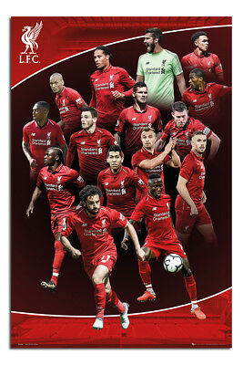 Liverpool FC 2018-19 Season Players Poster New - Maxi Size 36 x 24 Inch
