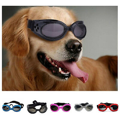 Glasses For Dogs Portable Pet UV Sun Sunglasses Eye Wear Protection Goggles
