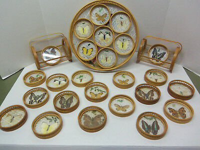 Vintage Bamboo Butterfly Glass Serving Tray With Coasters & Holders - Complete