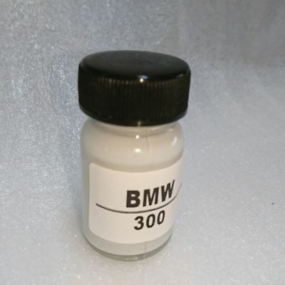 30ml For BMW Touch Up Paint Color Code 300 Alpine White Iii NEW