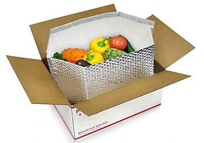 5 Pack Foil Insulated Liners 10 x 10 x 10. Thermal Liners for Boxes. Bott... New